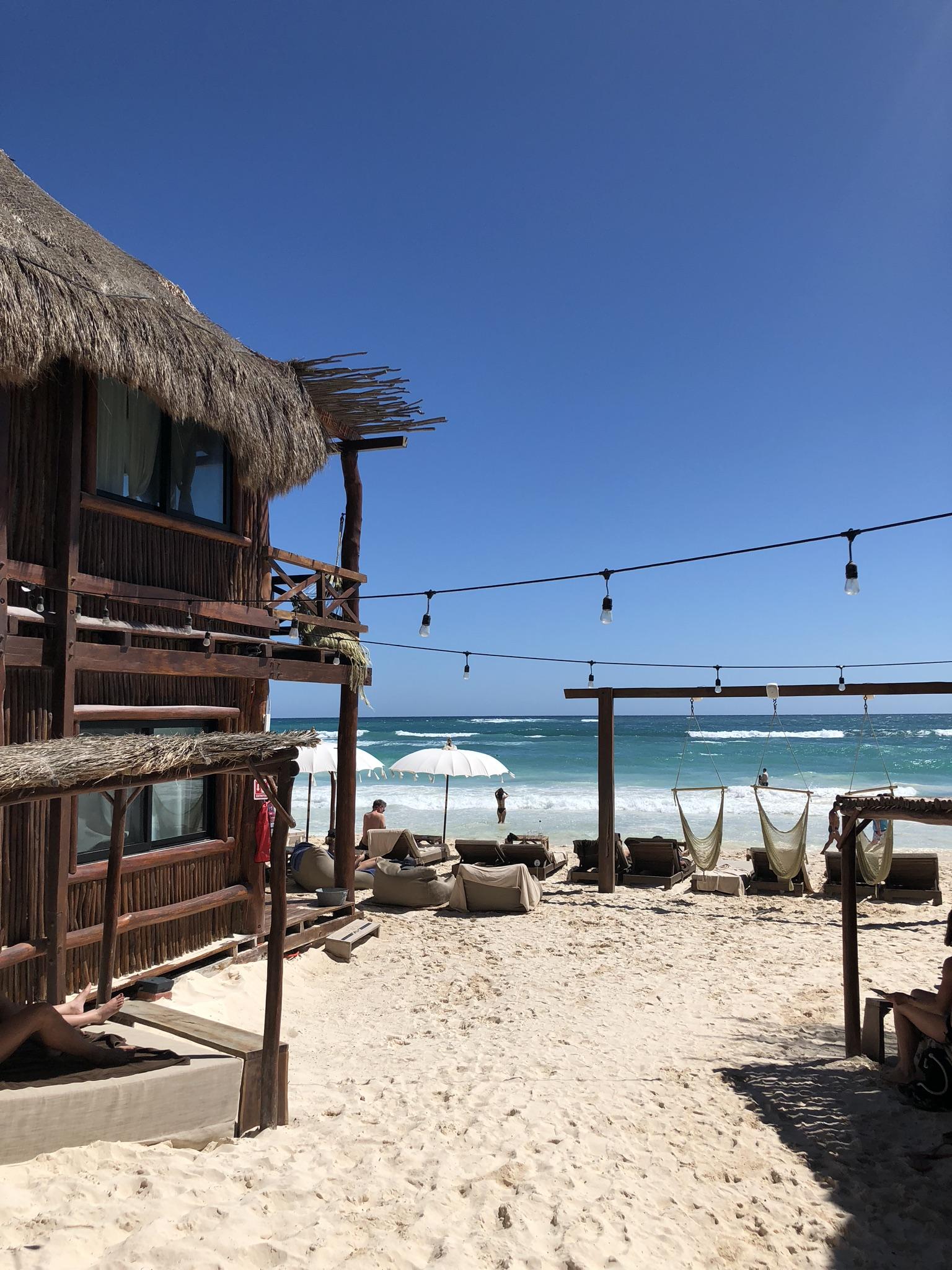 Hotelito Azul, Middag på Gitano, Efterrätt till Varmrätt och Drink på Papaya Playa Project.